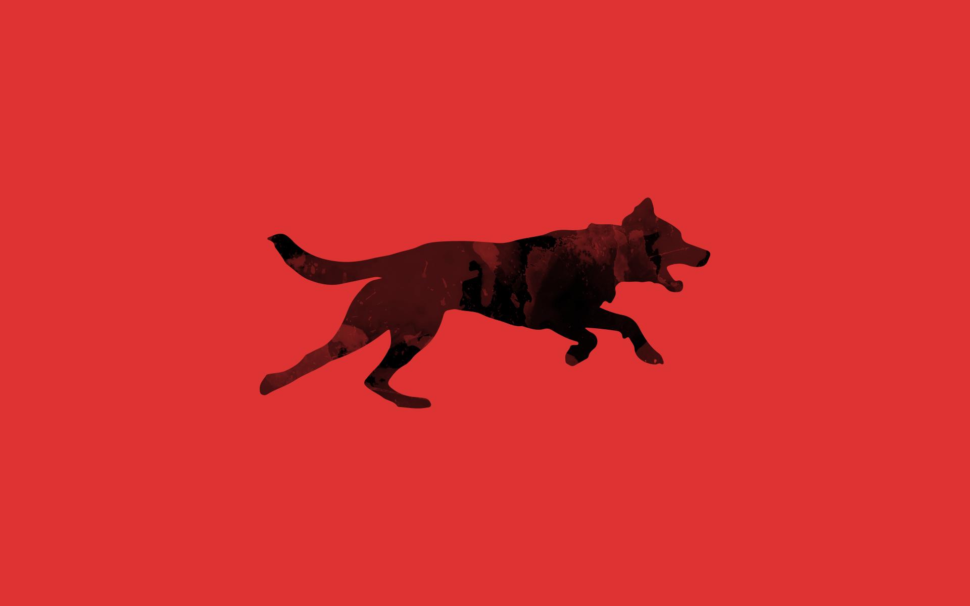 Hundesportverein Hof